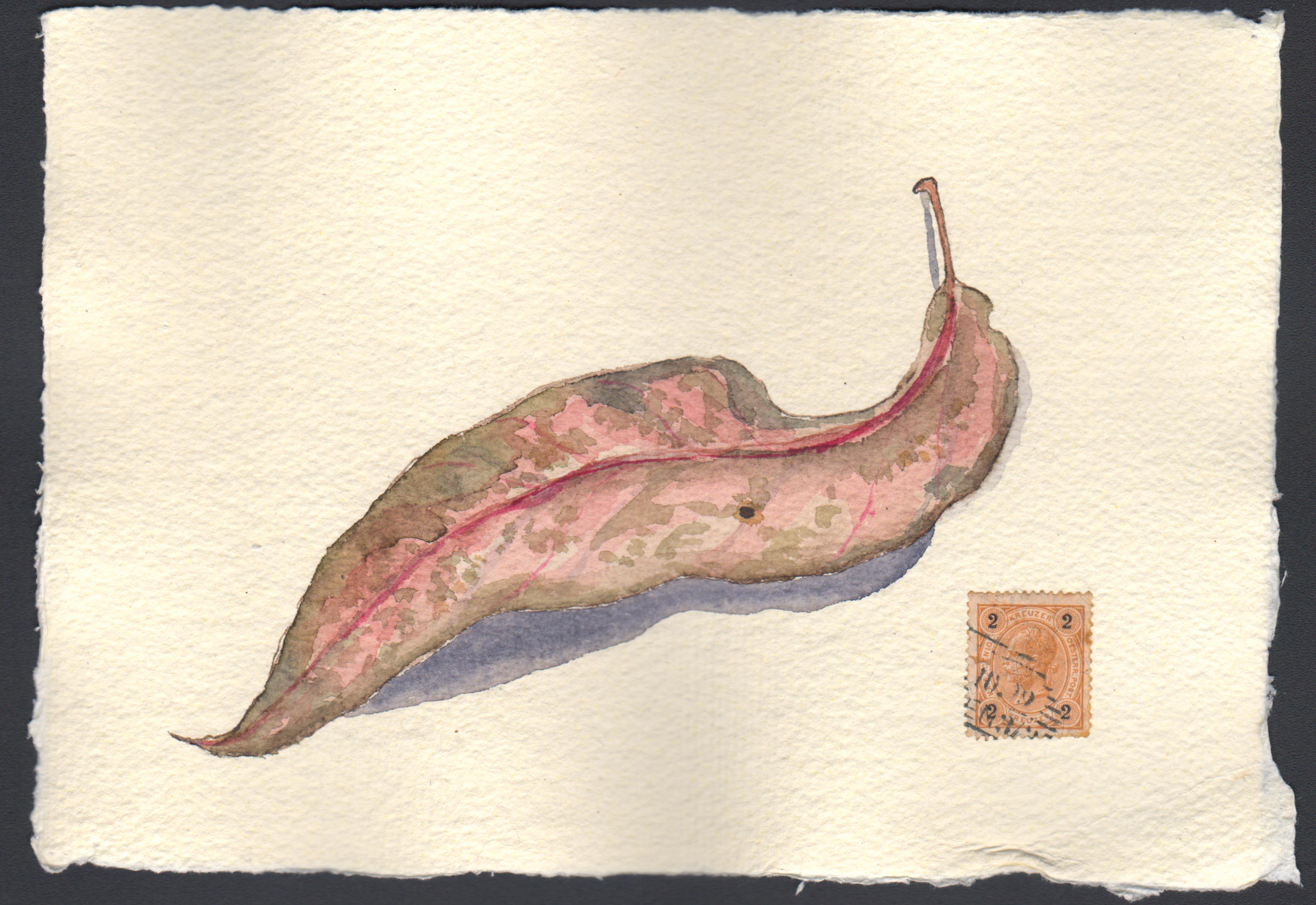 Leaf 022517-1